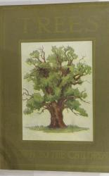 Trees Shown to the Children