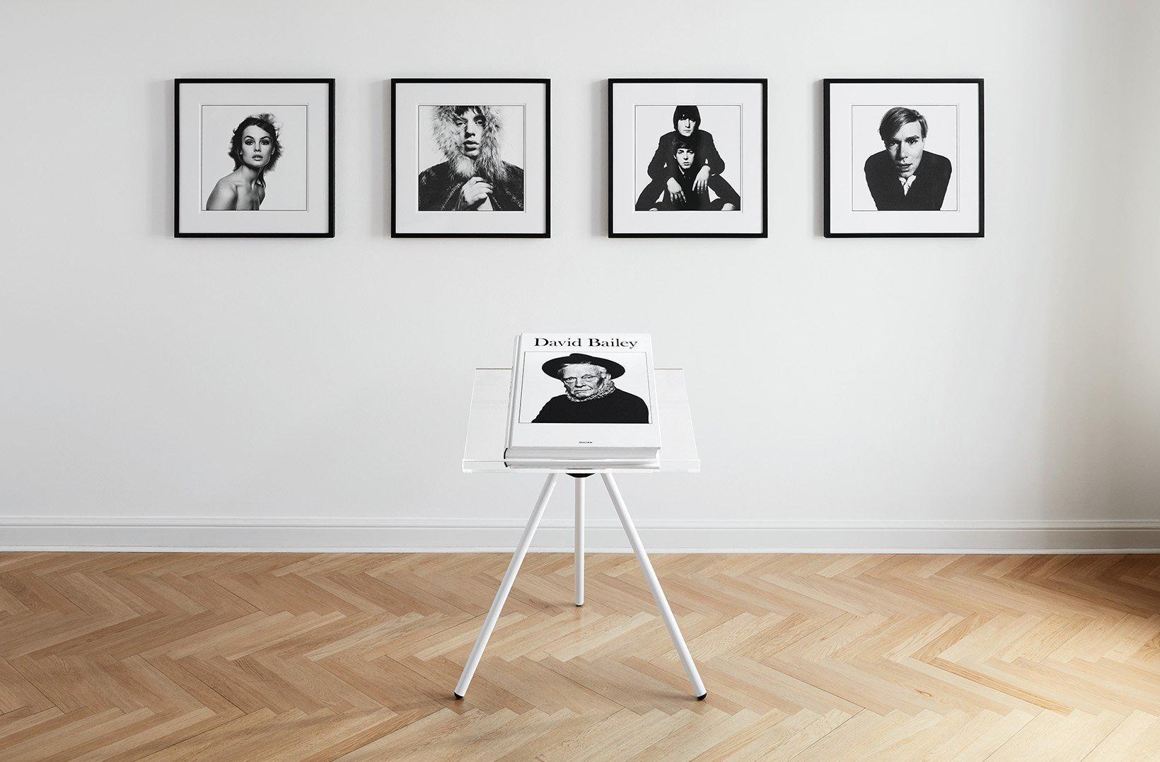 David Bailey Art Edition Any Warhol Variant