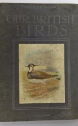 Our British Birds