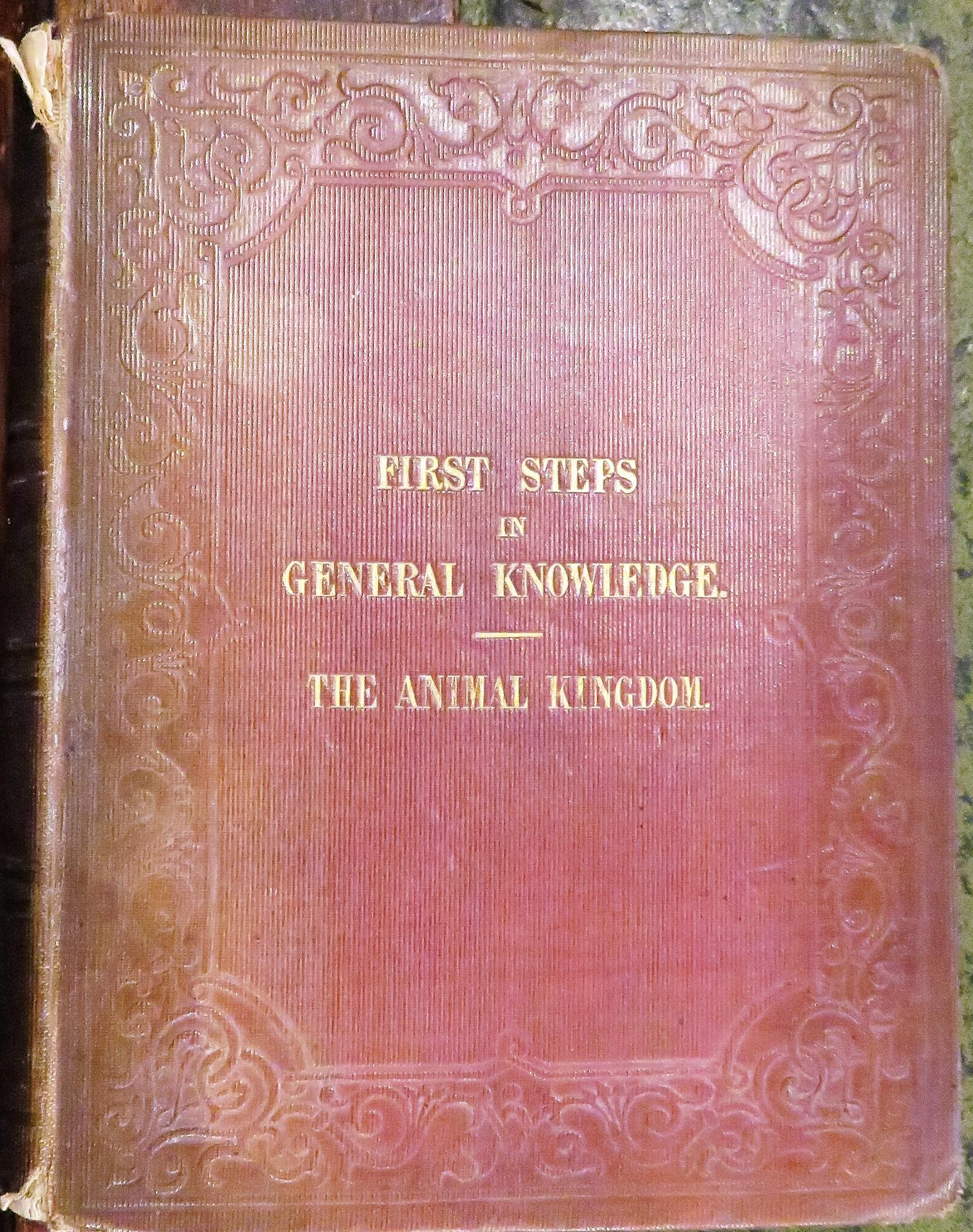 First Steps in General Knowledge Part III The Animal Kingdom