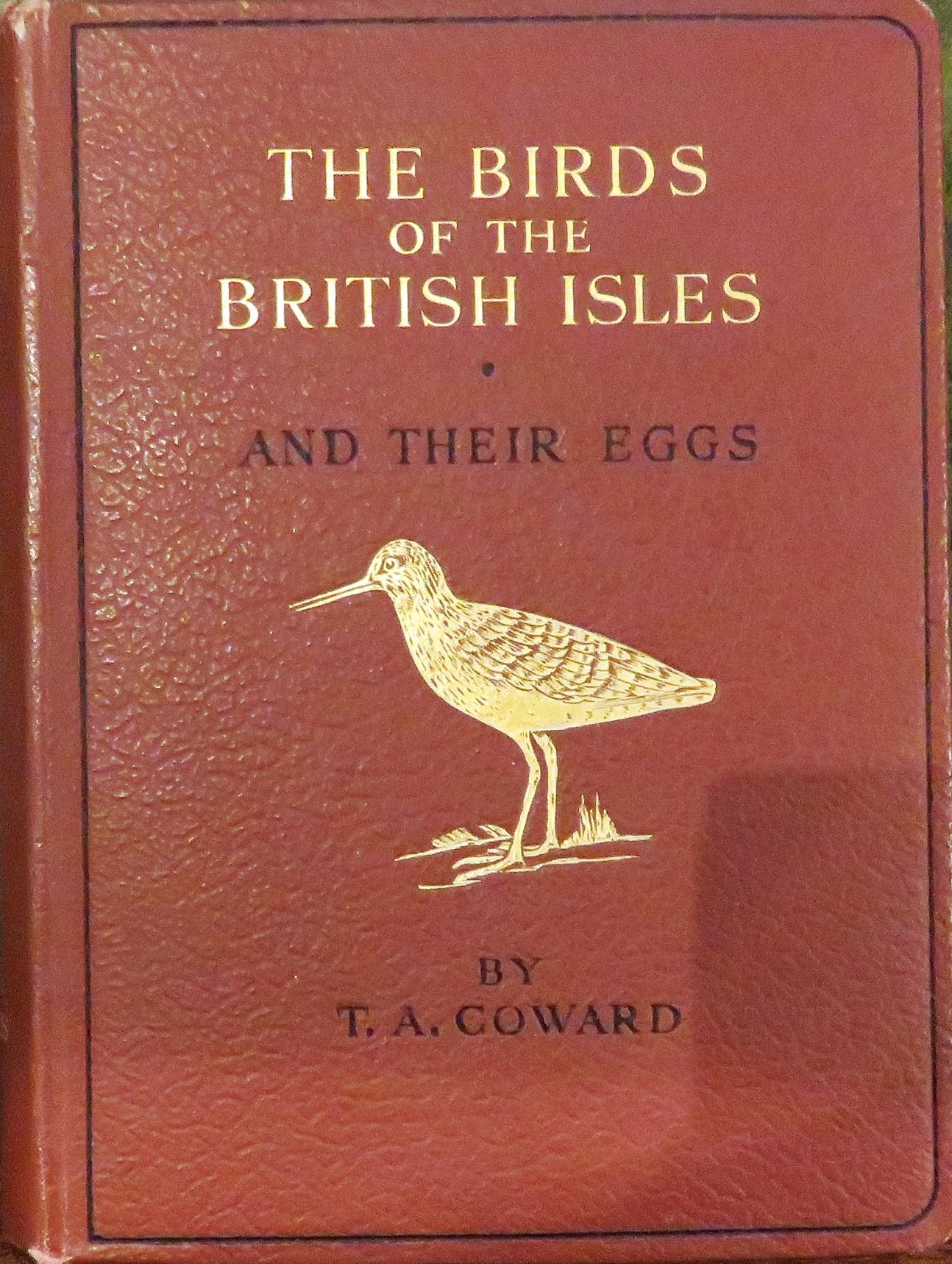 The Birds of the British Isles and Their Eggs