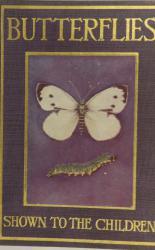 Butterflies Shown to the Children