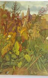 Eliot Hodgkin 1905-1987 Painter & Collector