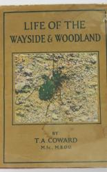 The Wayside And Woodland Series Life Of The Wayside & Woodland