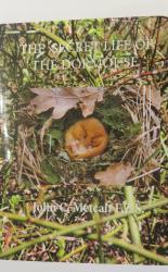 The Secret Life of The Dormouse (BRAND NEW and SIGNED)