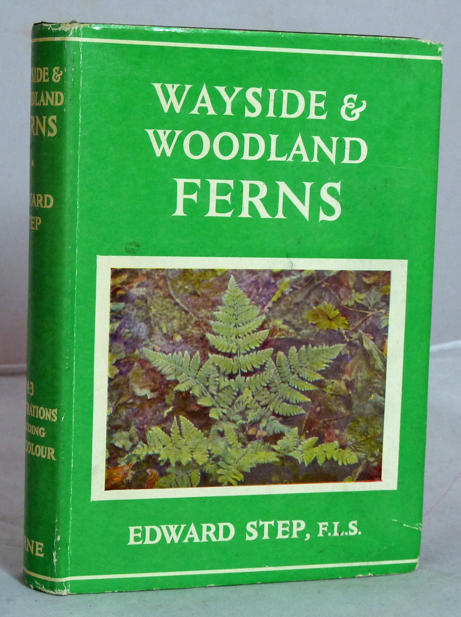 The Wayside And Woodland Series. Wayside & Woodland Ferns
