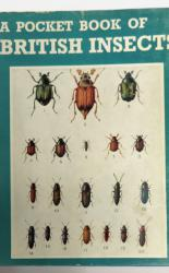 A Pocket Books Of Insects