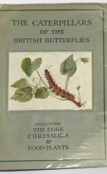 The Wayside And Woodland Series The Caterpillars Of The British Butterflies