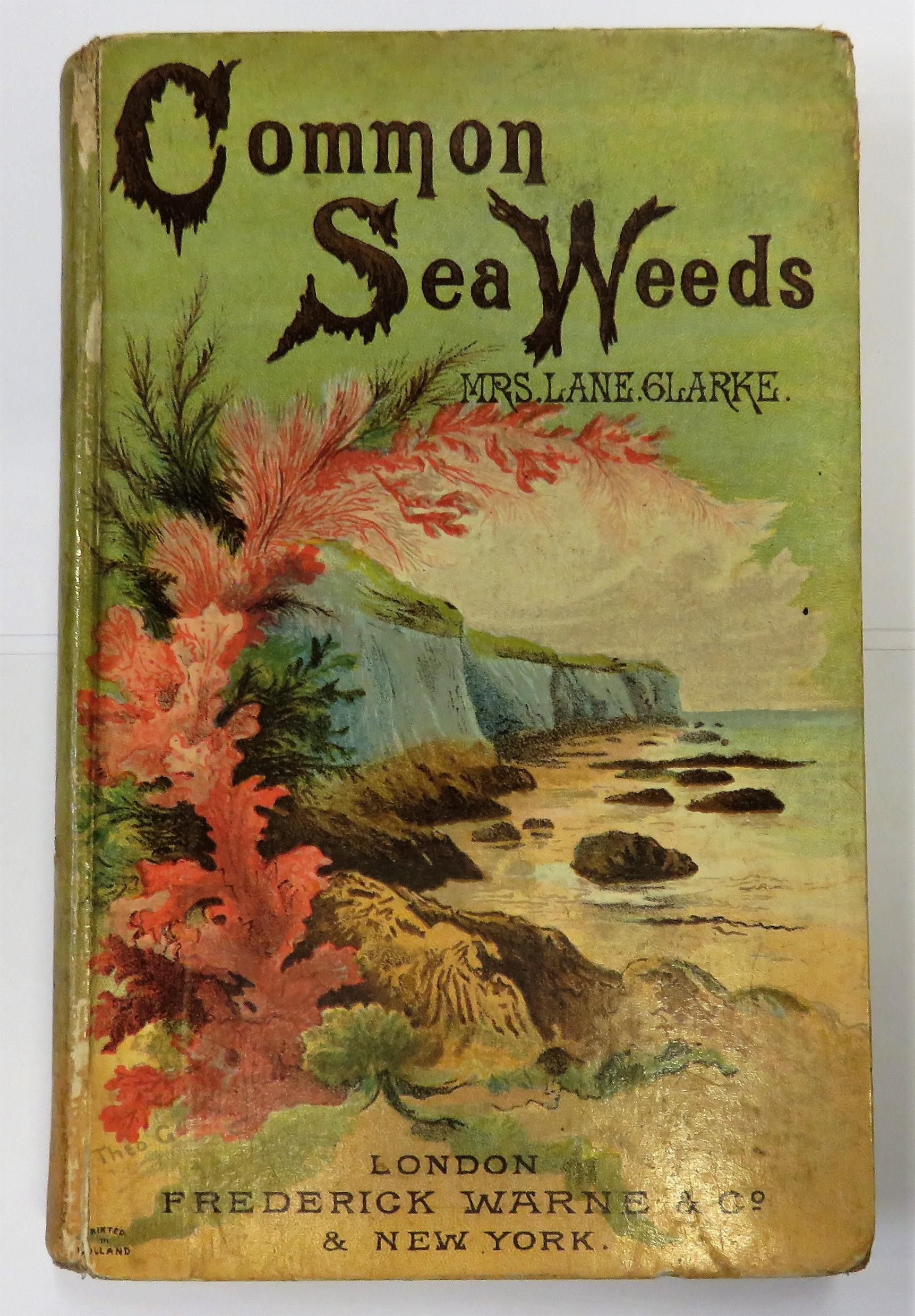 The Common Seaweeds Of The British Coast And Channel Islands