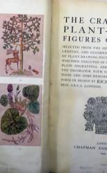 The Craftsman's Plant-Book: Or Figures of Plants