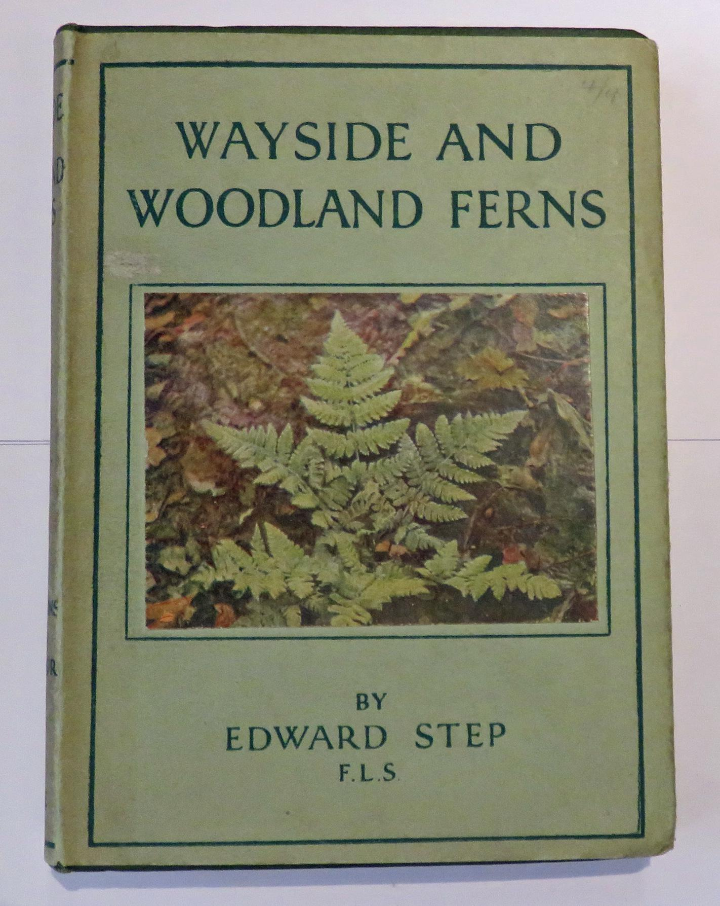 Wayside and Woodland Series Ferns