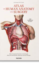 Bourgery. Atlas of Human Anatomy and Surgery.