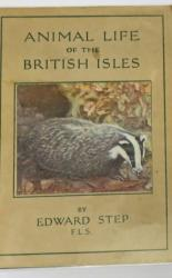 The Wayside And Woodland Series Animal Life Of The British Isles
